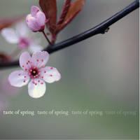 taste of spring 4 by MorkOrk