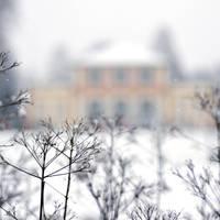 winter wonderland by MorkOrk