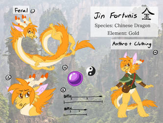 Jin Reference Sheet (2018) by EeveesAndDragons