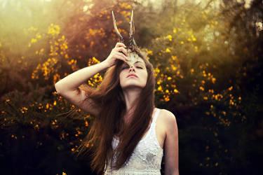 Ancient Spirit by Samantha-meglioli