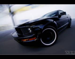 ford mustang by gtimages