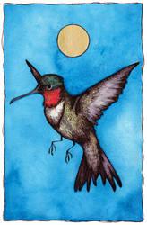 The Hummingbird by FawnLorn