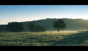 Good Morning by lassekongo83