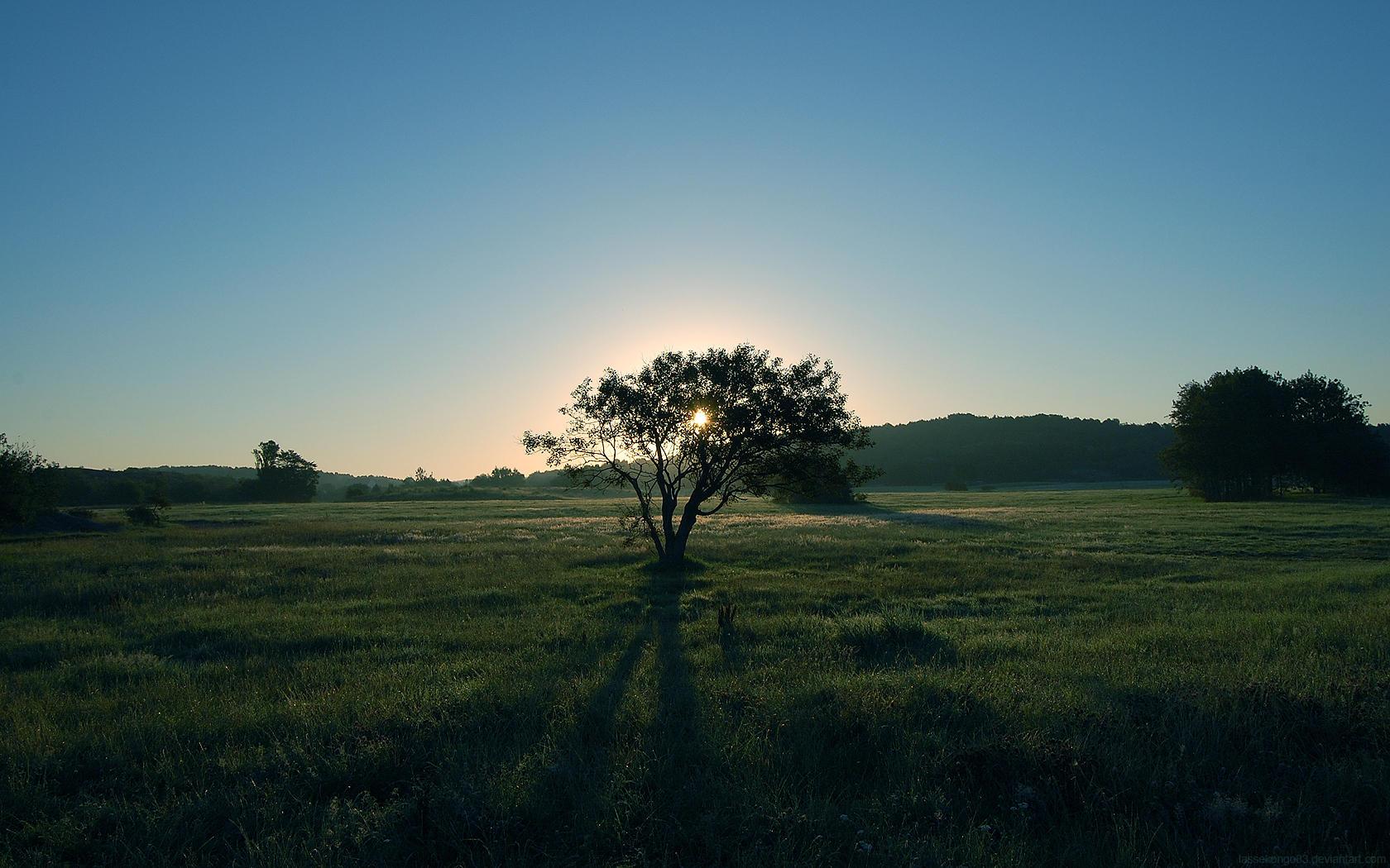 Dawn by lassekongo83