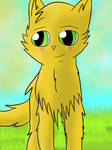 An apprentice of Thunderclan by bigsonicfanandN