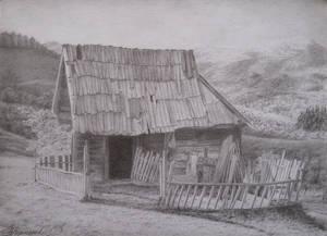 Carpathian House by NaumenkoO