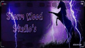 StormWoodStudio's Profile Picture