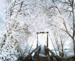 Whiteout Bridge by AneurysmGuy