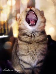Feel like singing jingle bells by blondepassion