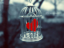 trapped love by blondepassion