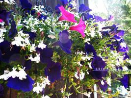 Fleurs by LesEtoilesLumiere