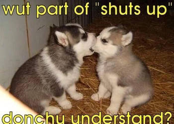 Shut up by TheFunnyAmerican