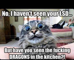 LSD by TheFunnyAmerican