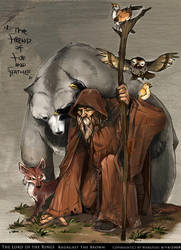 Radagast the Brown by Wangyuxi