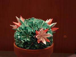 Modular Cactus by wolbashi