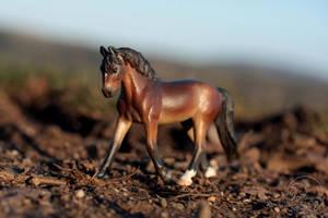 Arien by PegasusCreations