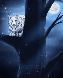 Spirit of the North by Rigbarddan