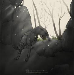 Shaggydog by Rigbarddan