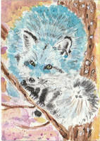 Blue fox in a tree  watercolor  aceo by tulipteardrops