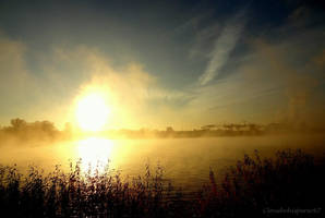 Misty dawn at the quiet lake by Cloudwhisperer67