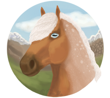 YHH - Headshot | Completed by PoisonSoldat