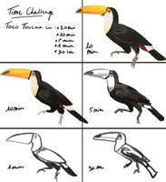 Time Challenge - A Toucan by PoisonSoldat