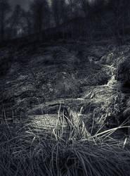 Hide by Sortvind