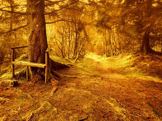 Road to Hobbiton by Sortvind