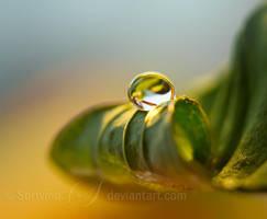 Prism by Sortvind
