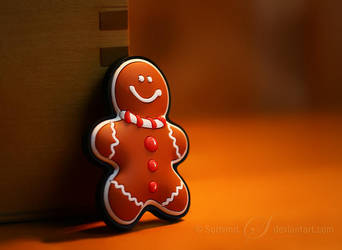 Gingerbread Man by Sortvind