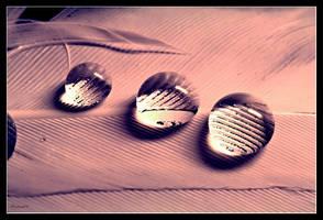 3 drops by Sortvind