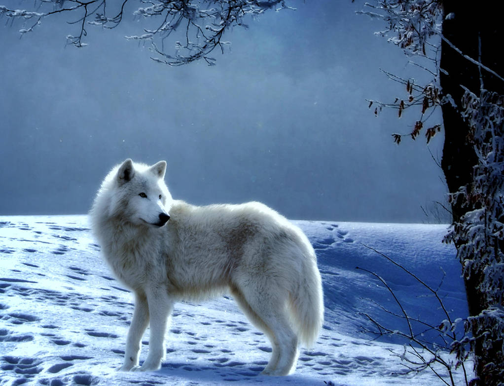 Winters Guardian by Splat-Shot