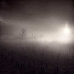 Rays of Hope by nilgunkara