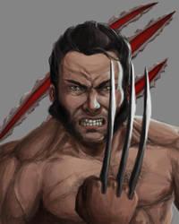Wolverine by sketchabeth