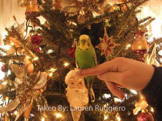 Christmas of 2009 Link by LoreSakurachan