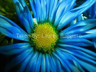 Blue Flower by LoreSakurachan