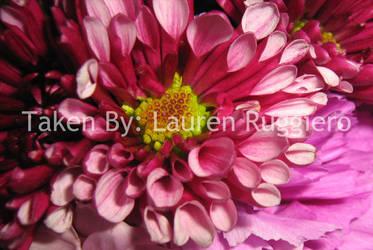 Bright Flowers by LoreSakurachan