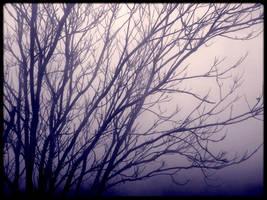 Mist-taken by TheSkyEtc