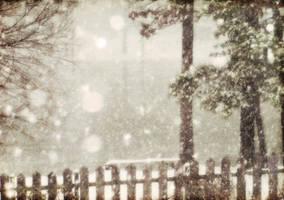 large snowflakes by duckpondevans
