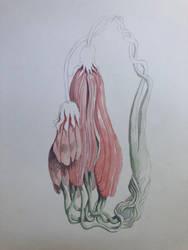 Botanical illustration. by tolagunestro