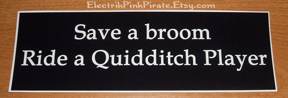 Ridea quidditch player sticker by ElectrikPinkPirate