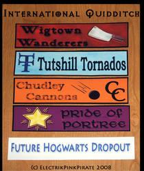 HP Quidditch Stickers v2.0 by ElectrikPinkPirate