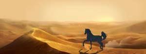 Sea of sand by Roiuky