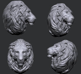 Lion bust practice by Roiuky