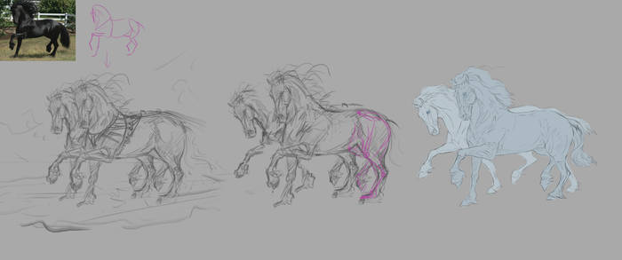 Sketching horses exercise! by Roiuky