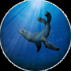 Seal by BartimaeusTrilogyFan