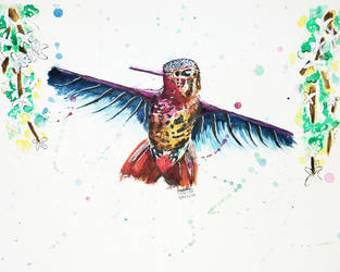 Hummingbird by Cloverperidot