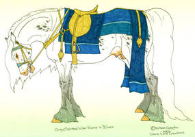 War Horse Stallion 1 by stonewolf