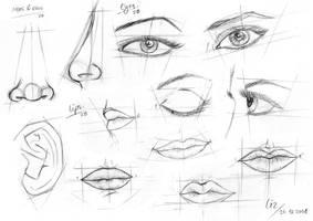 tutorial. by dark-liz