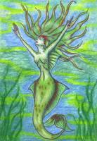 Spiderwick Caribbean Mermaid by Lagaz